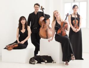 Photo of Solera Quartet